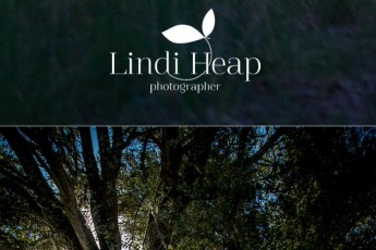 Portrait of Michael Sollis, Griffyn Ensemble by Lindi Heap Photography, Canberra Music Photographer